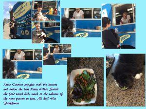Cat Food Truck