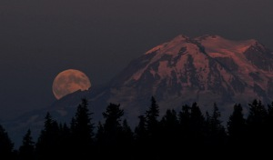 Moon Ranier